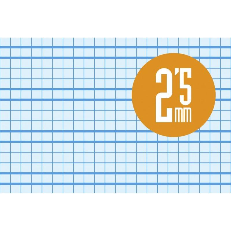 Cuaderno Espiral Folio 80 Hojas. Cubierta Polipropileno Fluor. AZUL. Cuadrovía 2,5mm.